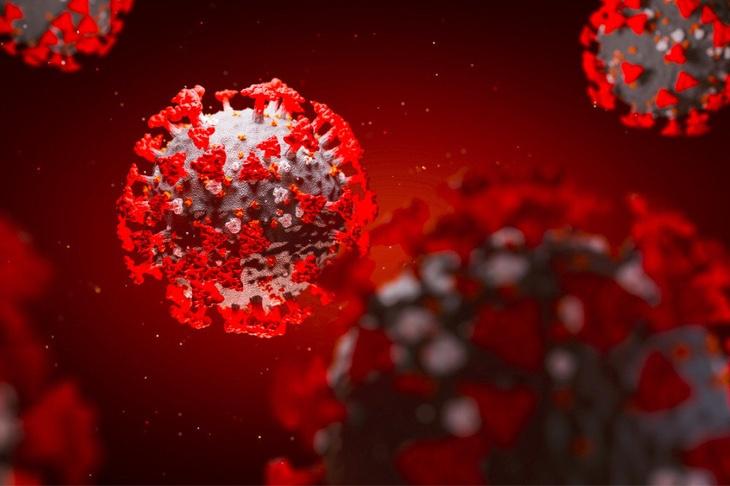 У 65 королёвцев за сутки подтвердили наличие коронавируса